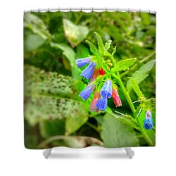 The Bells Shower Curtain