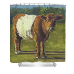 The Belted Cow Shower Curtain by Terri  Meyer