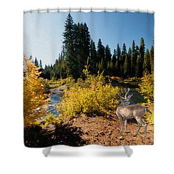 The Bend Of The Rogue River Shower Curtain by Diane Schuster