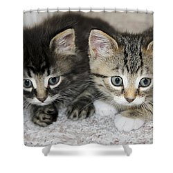 The Best Buddies Shower Curtain by Teresa Zieba