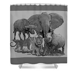 The Big Five Shower Curtain