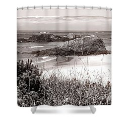 The Big Rock And The Pacific Shower Curtain