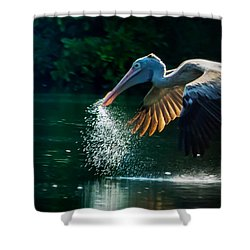 The Big Scoop Shower Curtain
