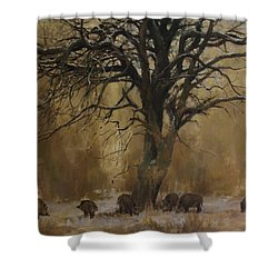 The Big Tree With Wild Boars Shower Curtain