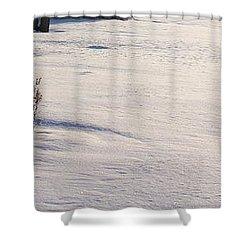 The Bird House Bench Shower Curtain
