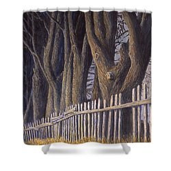 The Bird House Shower Curtain by Jerry McElroy