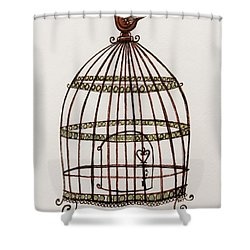 The Birdcage Shower Curtain by Elizabeth Robinette Tyndall