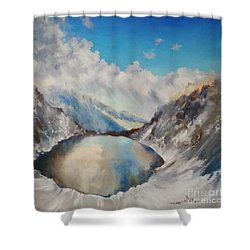 Shower Curtain featuring the painting The Black Lake Oil Painting by Maja Sokolowska