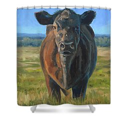 The Black Steer Shower Curtain