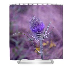 The Blue Softness Of A Teasel Shower Curtain by Michelle Meenawong