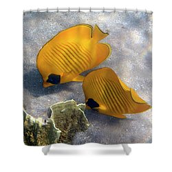 The Bluecheeked Butterflyfish Shower Curtain