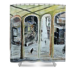 The Bohemian And His Dog Friendship Unlimited Shower Curtain