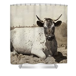Shower Curtain featuring the photograph The Boss by Robin-Lee Vieira