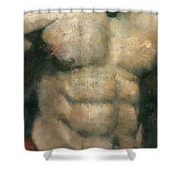The Boxer Shower Curtain by Steve Mitchell