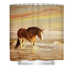 The Break Of Dawn Shower Curtain
