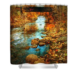 The Bridge By Government Street Shower Curtain by Tara Turner