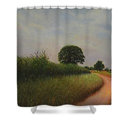 The Brighter Road Ahead Shower Curtain