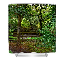The Brook At Gibbon's Bridge Shower Curtain