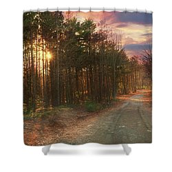 Shower Curtain featuring the photograph The Brown Path Before Me by Lori Deiter