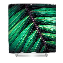 The Brush Strokes Shower Curtain