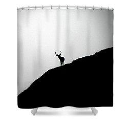 The Buck II Shower Curtain