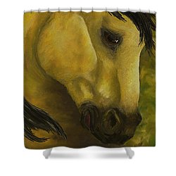 The Buckskin Revisited Shower Curtain