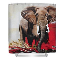 The Bull Elephant - Constitution Shower Curtain