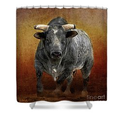 The Bull Shower Curtain by Jim  Hatch