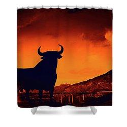 Spanish Shower Curtain