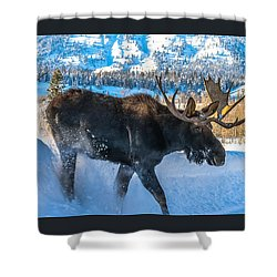 The Bulldozer Shower Curtain by Yeates Photography