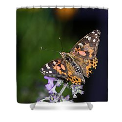 Shower Curtain featuring the photograph The Butterfly Effect by Alex Lapidus