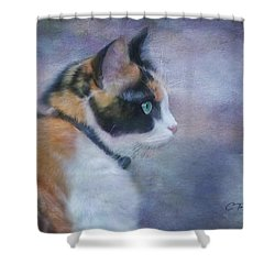 Shower Curtain featuring the digital art The Calico Staredown  by Colleen Taylor