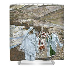 The Calling Of St. Andrew And St. John Shower Curtain by Tissot