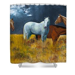 The Calm After The Storm Shower Curtain by Frances Marino