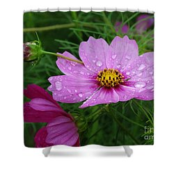 Shower Curtain featuring the photograph The Calming by J L Zarek