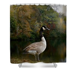 The Canadian Goose Shower Curtain by Jai Johnson