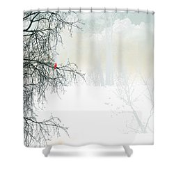 Shower Curtain featuring the digital art The Cardinal by Trilby Cole