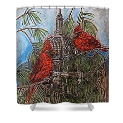 The Cardinals Visit St.pauls Cathedral Shower Curtain