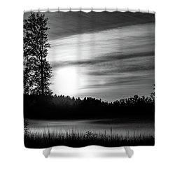 The Carpet Shower Curtain