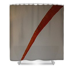 The Carrot Shower Curtain by Barbara Yearty