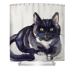 The Cat 8 Shower Curtain
