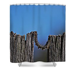 Shower Curtain featuring the photograph The Caterpillar by Cendrine Marrouat