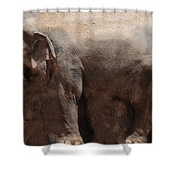 Shower Curtain featuring the digital art The Cave by Robert Orinski