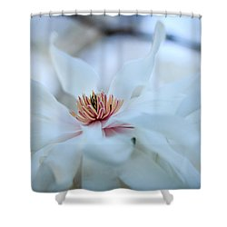 The Center Of Beauty Shower Curtain