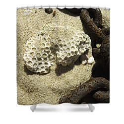 The Chain And The Fossil Shower Curtain by Trish Tritz