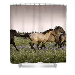 The Chase 1 Shower Curtain