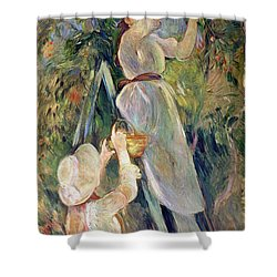 The Cherry Picker Shower Curtain by Berthe Morisot