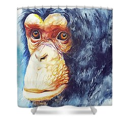 The Chimp_ Jojo Shower Curtain
