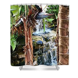 Shower Curtain featuring the photograph The Choice For Life by Kicking Bear Productions