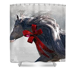 The Christmas Beau Shower Curtain